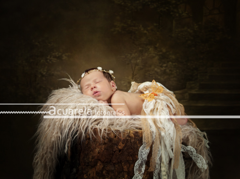 Fotógrafo de bebés